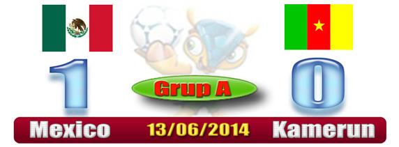 Skor Hasil Piala Dunia - Meksiko 1 Kamerun 0